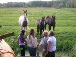 kralenmiepen en paardjes